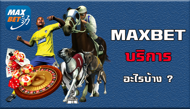 maxbet-คือ เว็บบอลออนไลน์ อันดับ 1